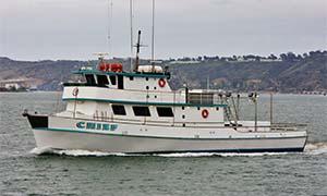 Chief Sport Fishing