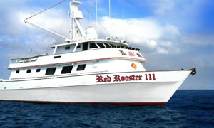 Red Rooster III Sport Fishing