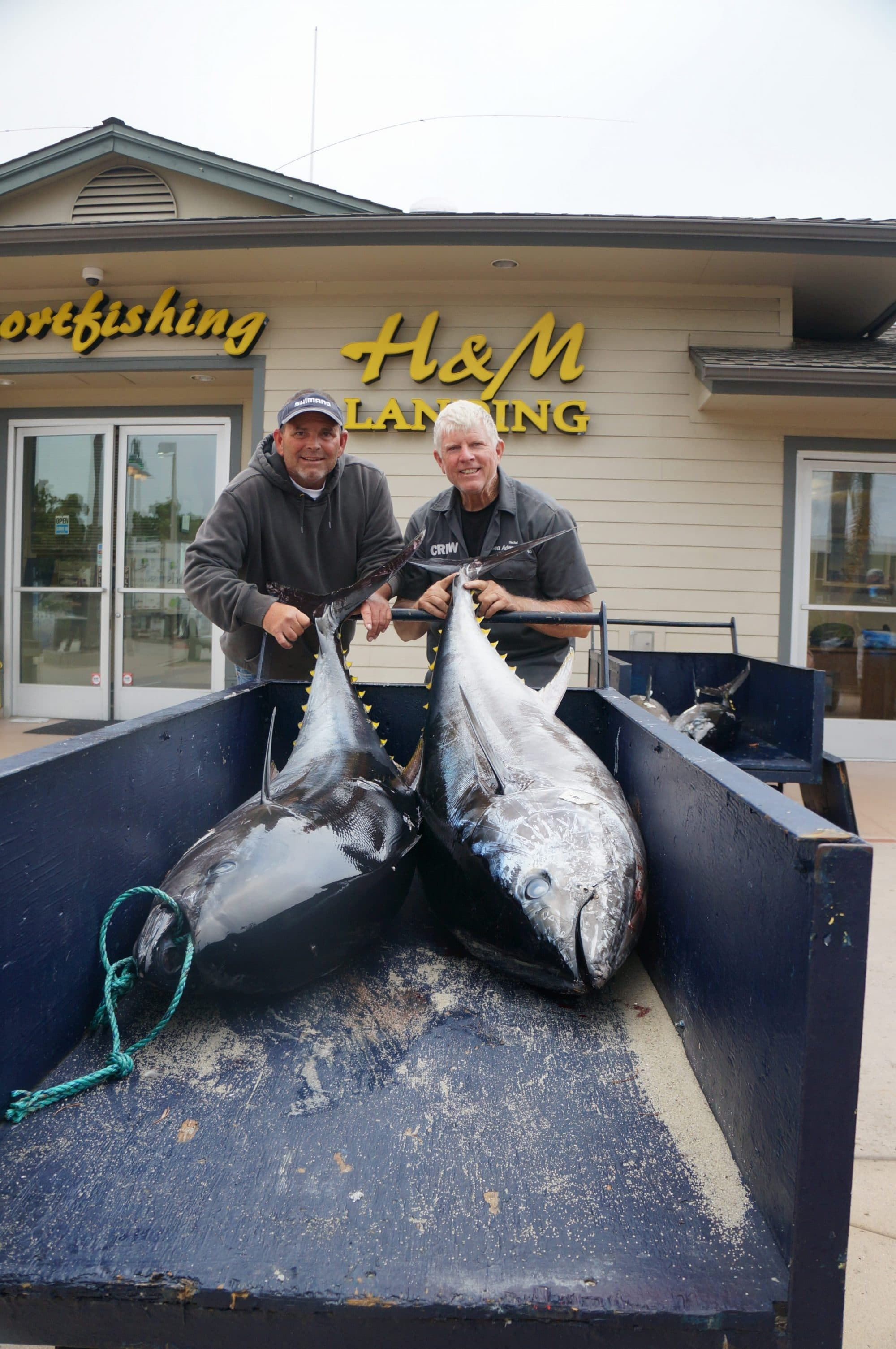 Bluefin Tuna Bonanza On The Sea Adventure 80 H M