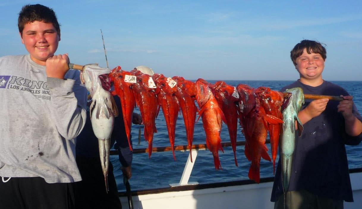 Red snapper h m landing bookings for H m landing fish count