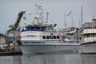 The Real Sea Adventure 80 America's Fun Place to Fish